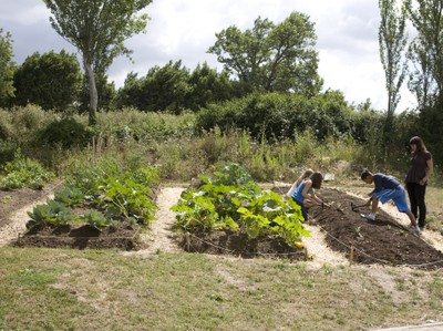 Ecological agriculture workshop: The sustainable garden. Guerrilla Garden