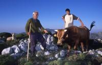 Museum's Pastoral – Encuentro de la Federación de Pastores (2009)