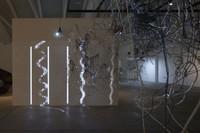 Synaptic Passage  (2010)