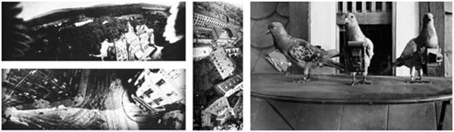 Vistas aéreas y palomas equipadas con cámaras
