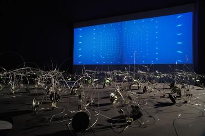 Luci. Sin nombre y sin memoria, 2008