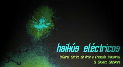 Nacho Montoto y Camilo de Ory ganan el Primer Certamen de Poesía: Haikús Eléctricos